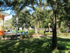 Parque José Affonso Junqueira, Poços de Caldas, MG.