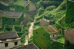 Fascinating photographs of an abandoned Chinese fishing village reclaimed by nature | Dangerous Minds