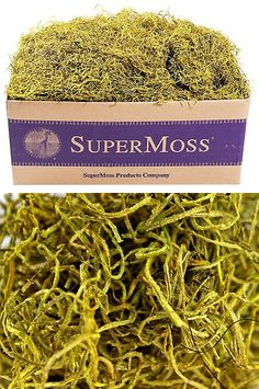 Swags and Garlands 28130: Supermoss 27010 Spanish Moss Preserved, Pear, 3Lbs -> BUY IT NOW ONLY: $38.26 on eBay!