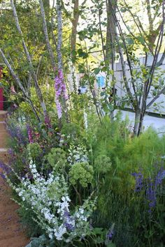 The international designers at the 2014 Chelsea Flower Show provide copious design inspiration.