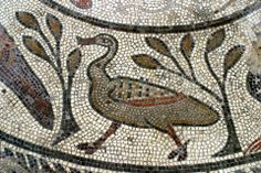 Bird from the Orpheus Mosaic, Corinium Museum, UK