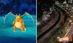 Pokemon Go players run like Usain Bolt after wild Charizard was spotted at Yishun canal
