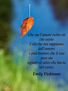 """Forse i versi più belli di questa grande poetessa. Li voglio usare per darvi i miei auguri per un Natale sereno con le persone che amate. Con amicizia e affetto  ♥‿♥   """"Che sia l'amore tutto ciò che esiste  È ciò che noi sappiamo dell'amore;  E può bastare che il suo peso sia  Uguale al solco che lascia nel cuore.  Emily Dickinson  #emilydickinson, #amore, #poesia, #italiano,"""