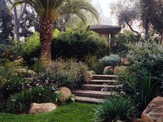 bahçe modelleri