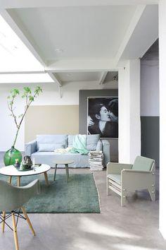 Living Room Inspiration / Inspiration Salon Leuk met vakken