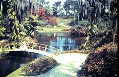 Florida Cypress Garden lagoon
