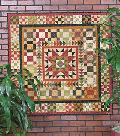 "Medallion Quilt  - Around Town by Dawna Baker. Look at block outside flying geese. 8"" block would have 4"" center - same proportion as sawtooth star block but much simpler."