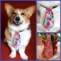 Two new neckties added to the collection: