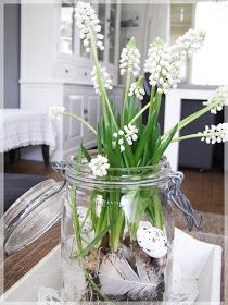 Bizzy @ Home: Witte bloeiers...