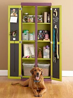 Is this adorable or what? A dog closet or pet pantry for all the spoiled puppies! I love this DIY idea to get all the dog stuff in 1 place. <3