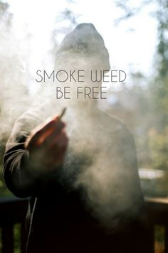 Creative Photography, Wall-, World, Wild, and Ganja image ideas & inspiration on Designspiration Weed Quotes, Weed Memes, Puff And Pass, Peer Pressure, Up In Smoke, Stoner Girl, Smoking Weed, Le Smoking, Cigar Smoking