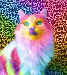 Ramzy Masri gives animals a colorful and rainbow look - Art - . - Ramzy Masri gives animals a colorful and rainbow look – Art – - Baby Animals Super Cute, Cute Little Animals, Cute Funny Animals, Cute Cats, Funny Cats, Cat Wallpaper, Animal Wallpaper, Beautiful Cats, Animals Beautiful