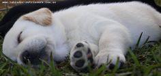 Sleeping beauty <3