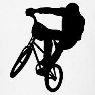 Image result for silhouette bmx skate board