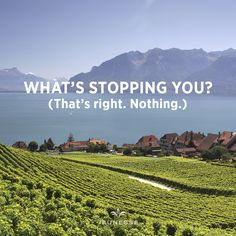 What's stopping you? (That's right. Nothing.) - http://zi6.365.pm/