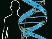 Genes May Explain Why Some Don't Respond to Bipolar Drug