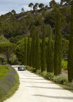 Country road in Luberon, France Garden entrance