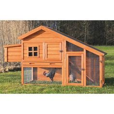 Trixie Trixie Chicken Coop with View Finish: Glazed Pine