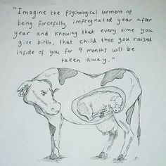 Factory farming is legalized abuse and murder. Choose a vegan cruelty free lifestyle.