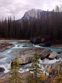 Kicking Horse River Yoho National Park Canada
