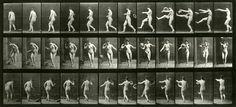 Eadweard Muybridge, Woman. Kicking., 1887, Collotype