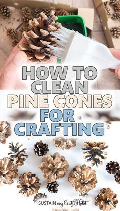 There are so many creative ways to use pine cones in your crafting, wedding, home decor and more. If you're wondering how to clean pine cones for crafts, you've come to the right place. Whatever your inspiration, we'll show you a simple and natural way of pine cone cleaning before you start crafting. #sustainmycrafthabit