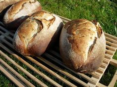 It might be harder to achieve good results than with traditional yeast bread, but what a flavour!This recipe is designed for baking bread in a wood-fired oven but, of course, you can use the conventional oven in your kitchen. Bread Oven, Yeast Bread, Bread Baking, Tostadas, Four A Pizza, Salty Foods, Kitchen Oven, Wood Fired Oven, How To Make Bread