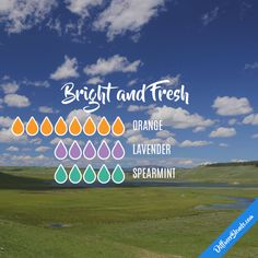 Bright and Fresh - Essential Oil Diffuser Blend