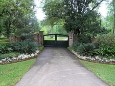 Azaleas, cast iron, & sago palm You are in the right place about driveway entrance Here we offer you the most beautiful pictures about the entrance landscape you are looking for. When you examine the Driveway Entrance Landscaping, Driveway Design, Driveway Gate, Fence Gate, Yard Landscaping, Driveway Ideas, Fencing, Front Gates, Entrance Gates