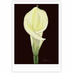 "Cyndi Steen ""Portrait Of A Calla Lily"" White Floral Fine Art Gallery Print"