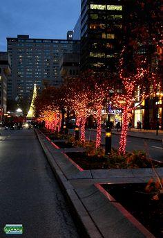 Christmas 2011 - Montreal, Canada