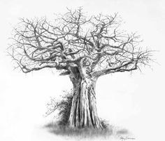 25 Beautiful Tree Drawing examples from around the world
