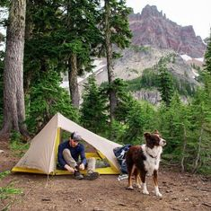 Tips for camping with your dog.