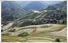 Hiking from Dazhai Village to Ping'an Village