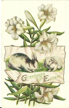 Embossed Easter Postcard with Rabbits and Easter Lilies