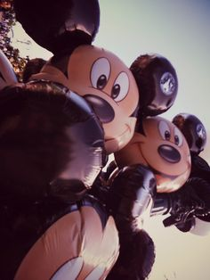 Disneyland Paris ♥