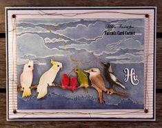 Fat Cat's Gallery - Australian Birds
