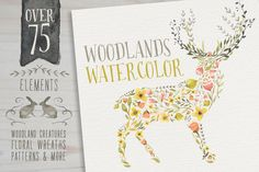 Woodlands Watercolor megapack by Glanz Graphics on Creative Market