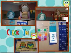 Owl Themed Classroom–Stephanie Allgood