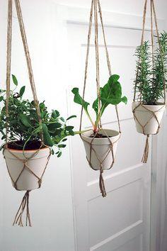 Zuperzozial flowerpot