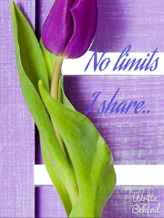 """If you belong to the """"No Pin Limit"""" group.Please pin away. No stress. If you like it, pin it. Fillet Crochet, Green And Purple, Purple Lilac, Pinterest Pin, All Things Purple, Room Accessories, Make New Friends, As You Like, Welcome"""