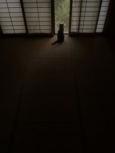 A room with Japanese sliding panels, Shoji 障子