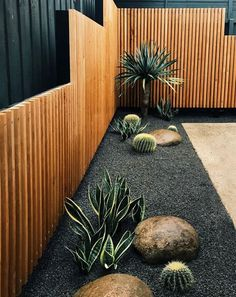 Cacti in gray gravel with smooth boulders on the edge of the .- Kakteen in grauem Kies mit glatten Felsbrocken am Rand des Wüstengartens – Gartengestatung 2019 Cacti in gray gravel with smooth boulders on the edge of the desert garden, - Back Gardens, Outdoor Gardens, Modern Gardens, Small Front Gardens, Formal Gardens, Front Yard Gardens, Garden Projects, Garden Inspiration, Backyard Privacy