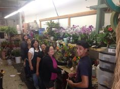 Working at Everyday Flowers
