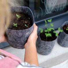 Comment bien choisir ses pots pour cultiver sur son balcon ?