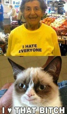#grumpycat#hatestheworld#couldn'tlovehimmore