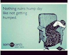 Hump day.... hope yours is extra humpy! LOL
