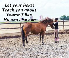 Horses, Let It Be, Teaching, Animals, Animales, Animaux, Learning, Education, Animais