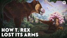 How T-Rex lost its arms. Video will show you how to step up your pretending to be a dinosaur game. Dinosaur Games, Dinosaur Fossils, Royal Society Of London, Burmese Python, Tyrannosaurus Rex, Vertebrates, Science And Nature, T Rex, Prehistoric