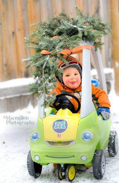 Macmillen Photography Winter Mini Sessions $60. https://www.facebook.com/macmillenphoto #winterphotography #chirstmascard #christmascards #photography #toddlerphotography #kamloopsphotography #childphotography